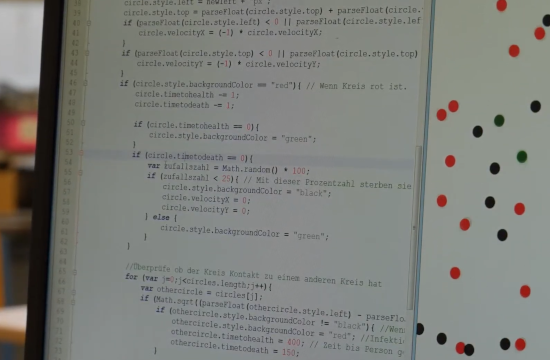Mathematik am Computer